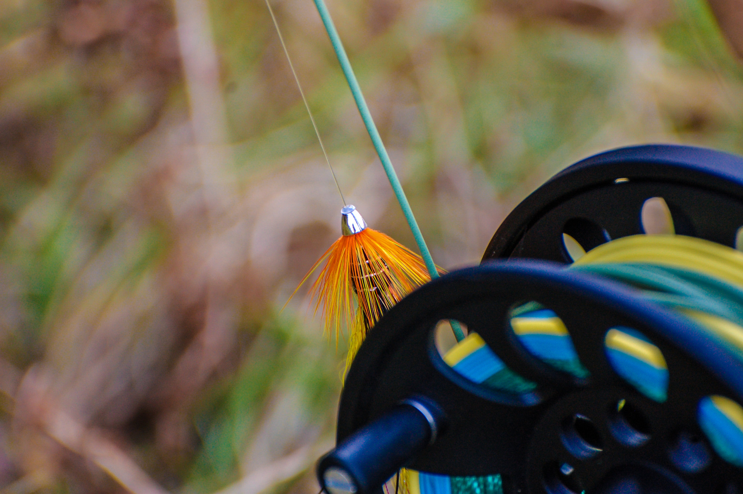 Fly Fishing Scotland