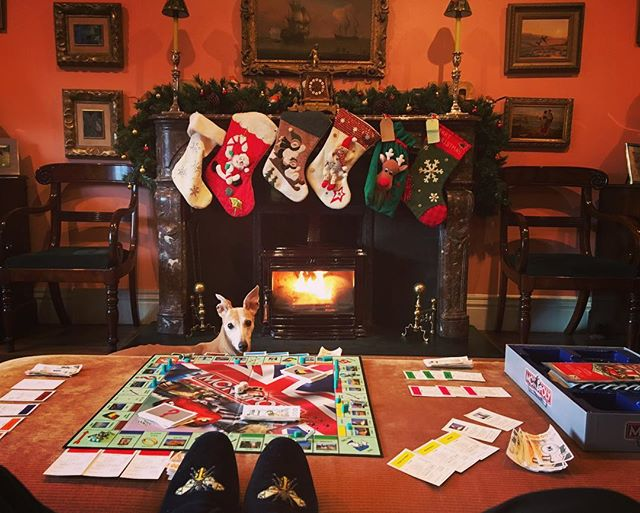The Irish take Christmas very seriously. From all of the team at Gunn Line and @gunnsporting we hope you have a wonderful Christmas and a loose New Year's Eve. #mensaccessories #mensgoods #love #mensstyle #instagood #style #british #present #britishmade #fashion #fashionblogger #gentlemen #winter #bespoke #luxury #menswear #huntball #handmade #uk #shooting #fishing #stalking #countryside #sport #seasons #blacktie #slippers #christmas #ireland #whippetsofinstagram
