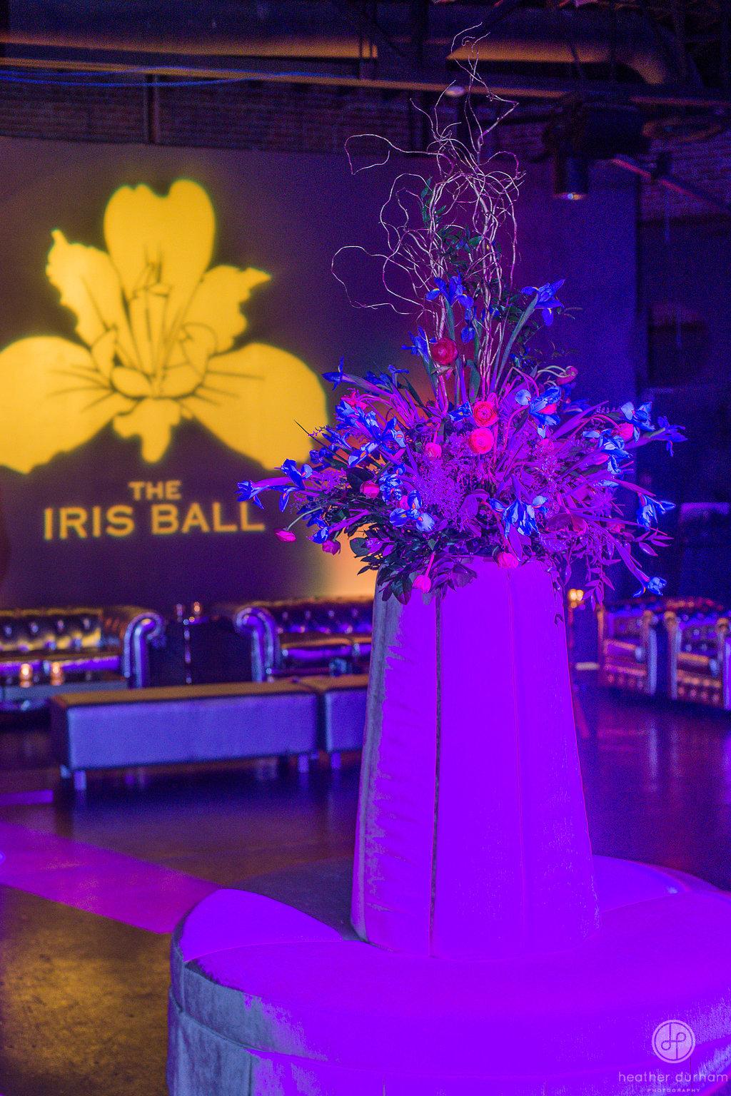 The Iris Ball - 2o17