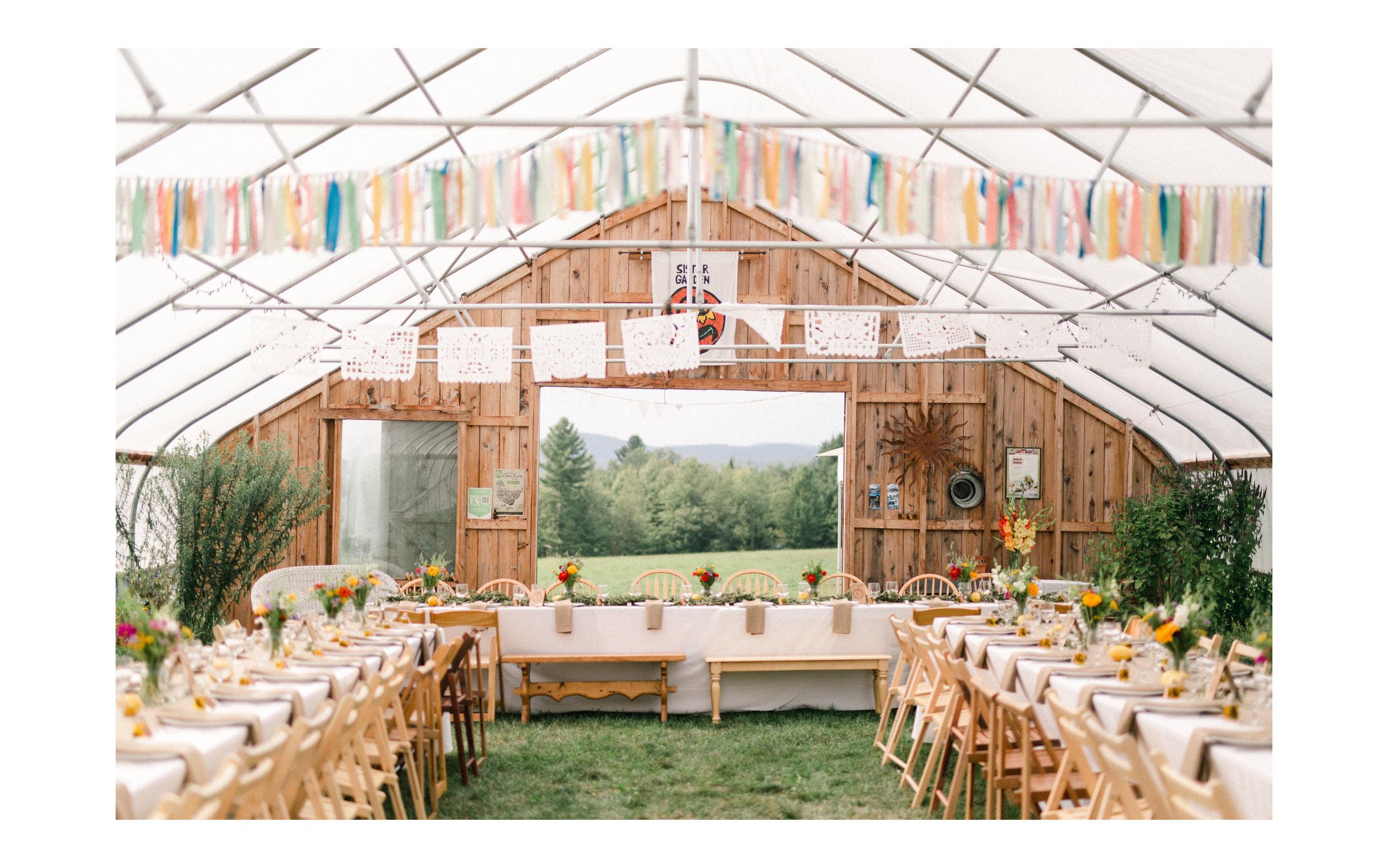 Stowe VT Farm Wedding Fine Art Wedding Photographer_Meg Haley Photographs_033.jpg