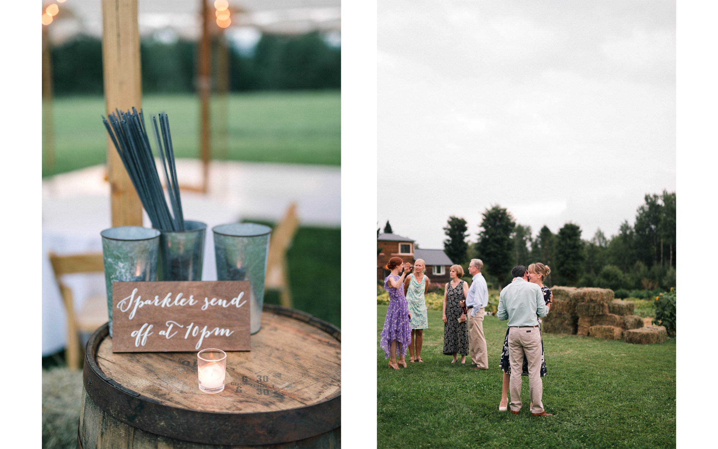 Stowe VT Farm Wedding Fine Art Wedding Photographer_Meg Haley Photographs_065.jpg