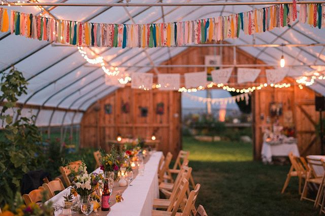 A favorite scene, the after-dinner, in the greenhouse 🌿🌻 #realweddings