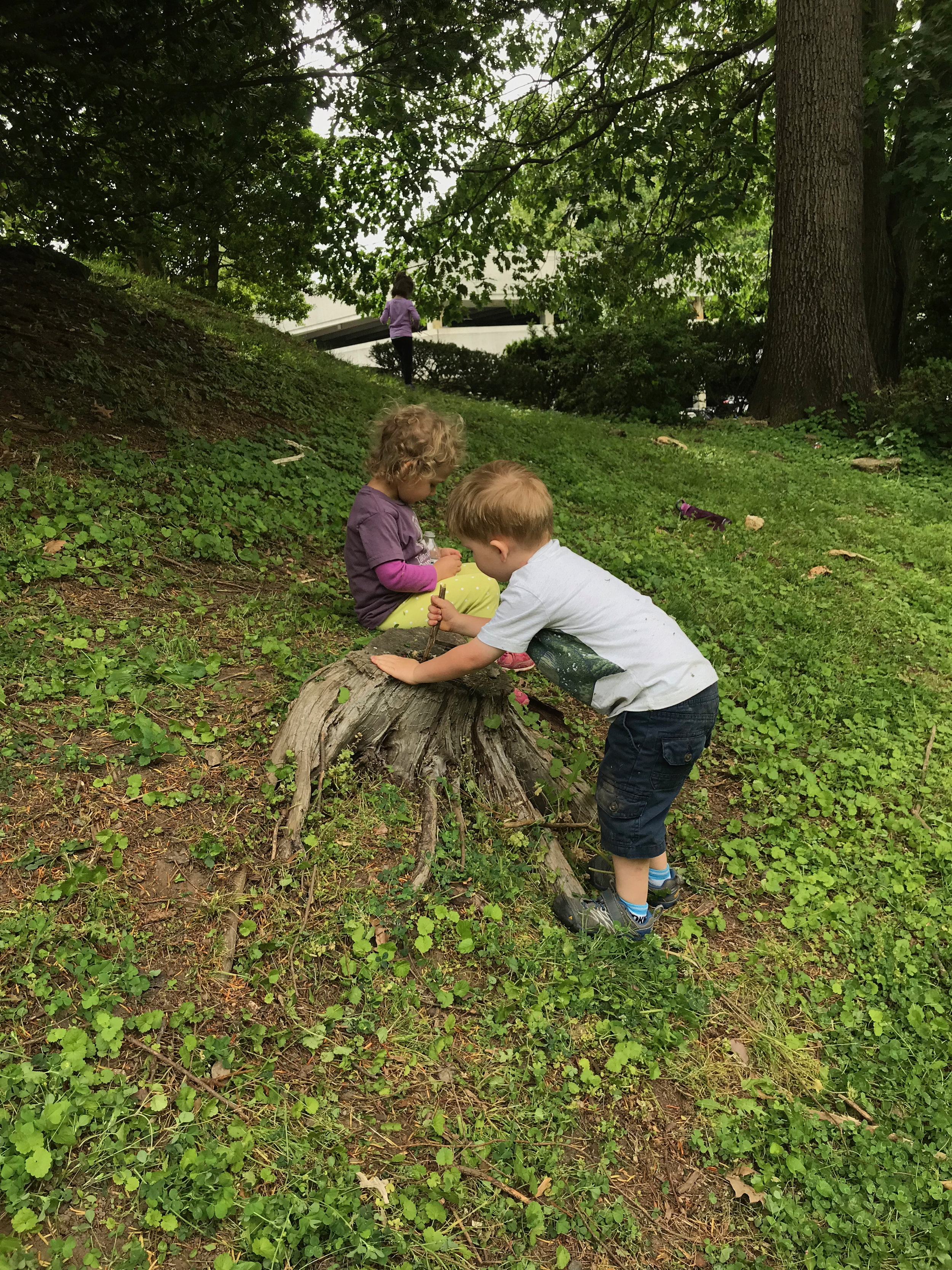 Just a stump? No. It is a cauldron with the addition of a stick and some ingredients. The lawn had just been mowed so it revealed so many great ingredients — clover and wild strawberries!