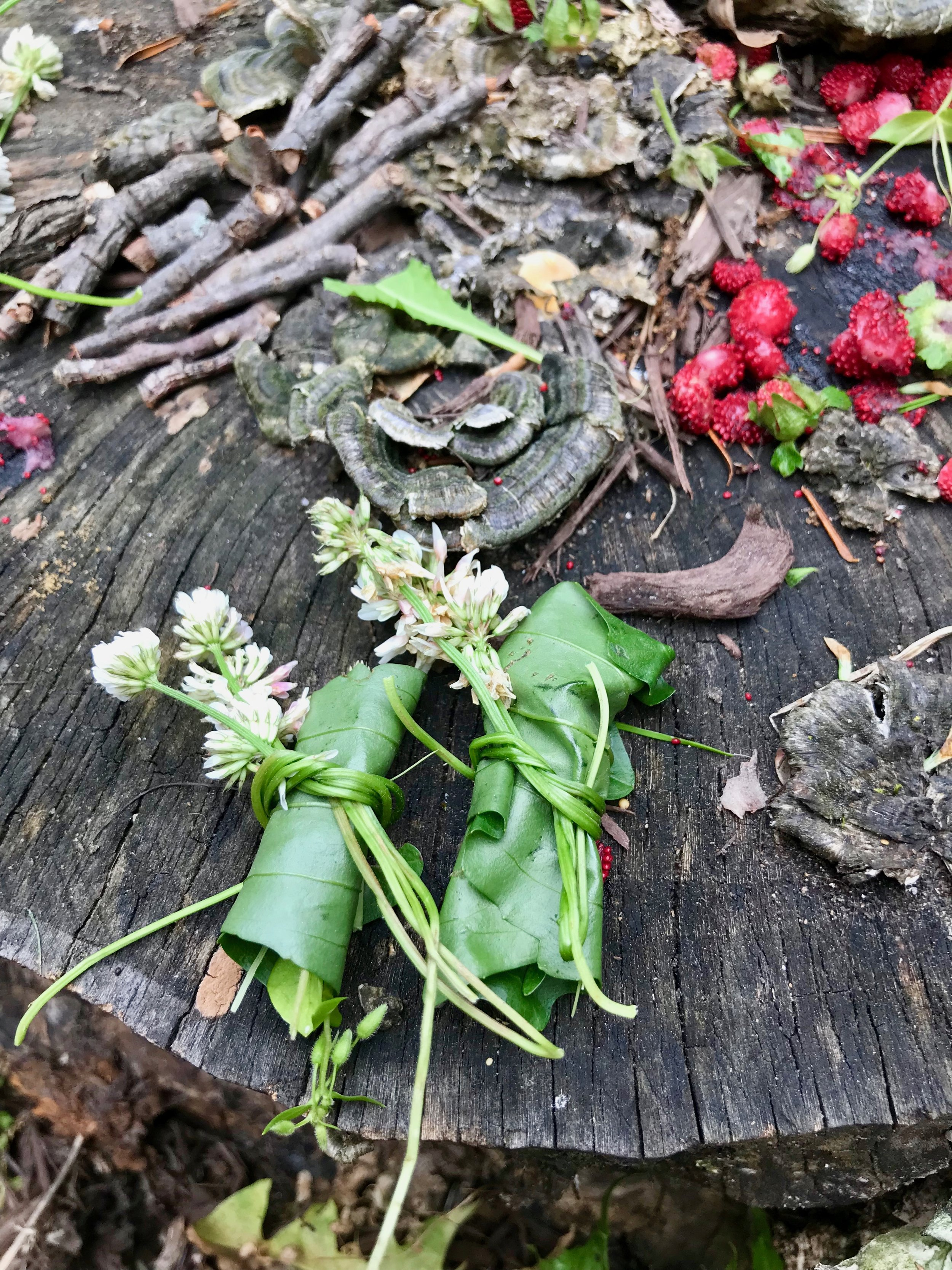 Fairy packages wrapped plantain leaves filled with clover leaves, small stones, and wild strawberries and tied with clover flowers.