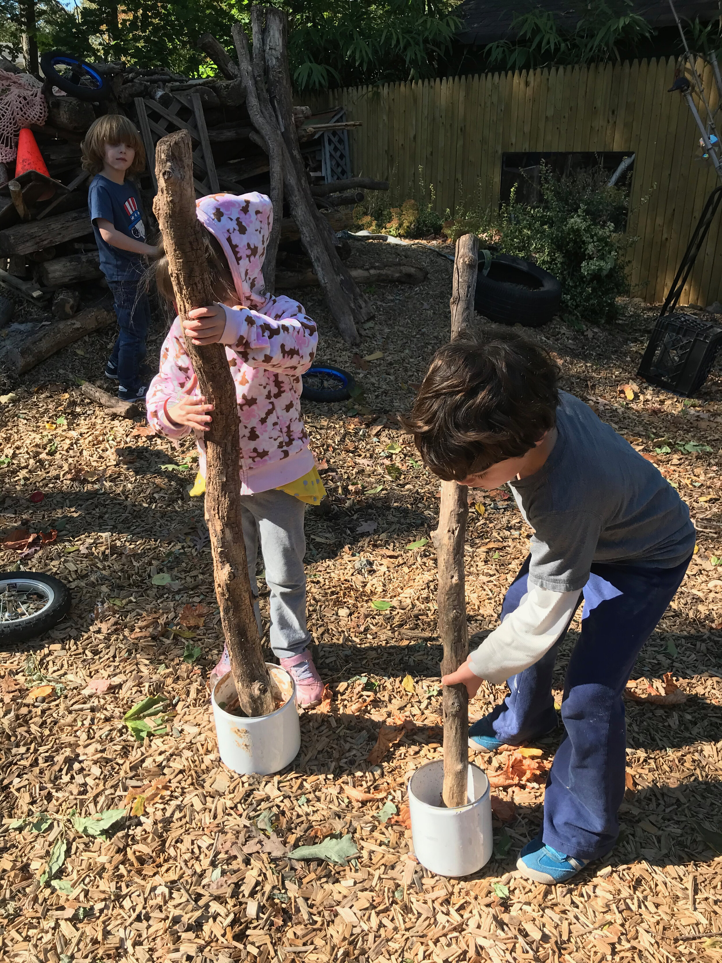 Day 293. October 20. Crushing leaves for the mud pit.jpg