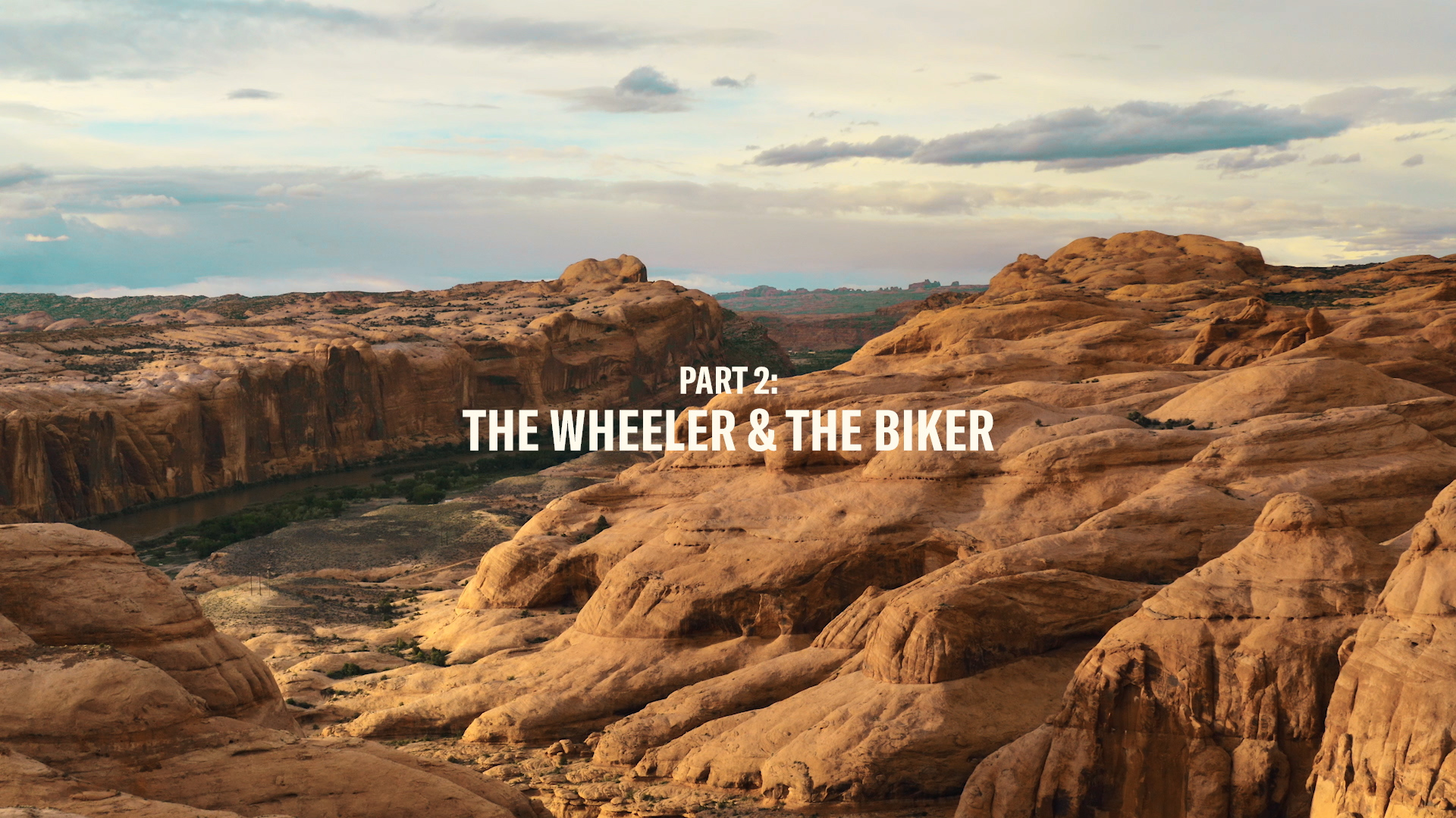 THE WHEELER & THE BIKER