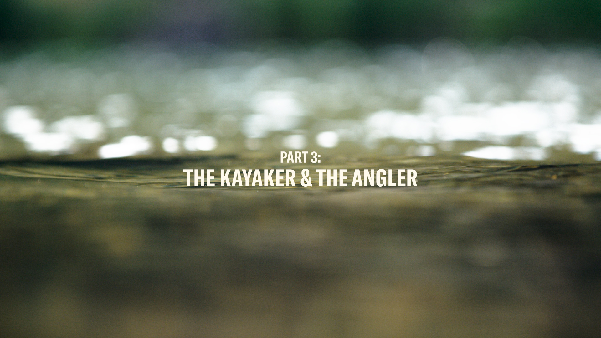 THE KAYAKER & THE ANGLER