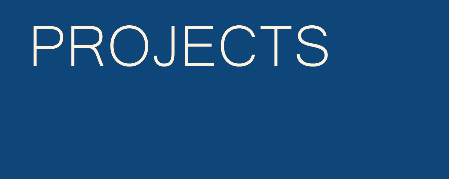 PROJECTS ICON.jpg