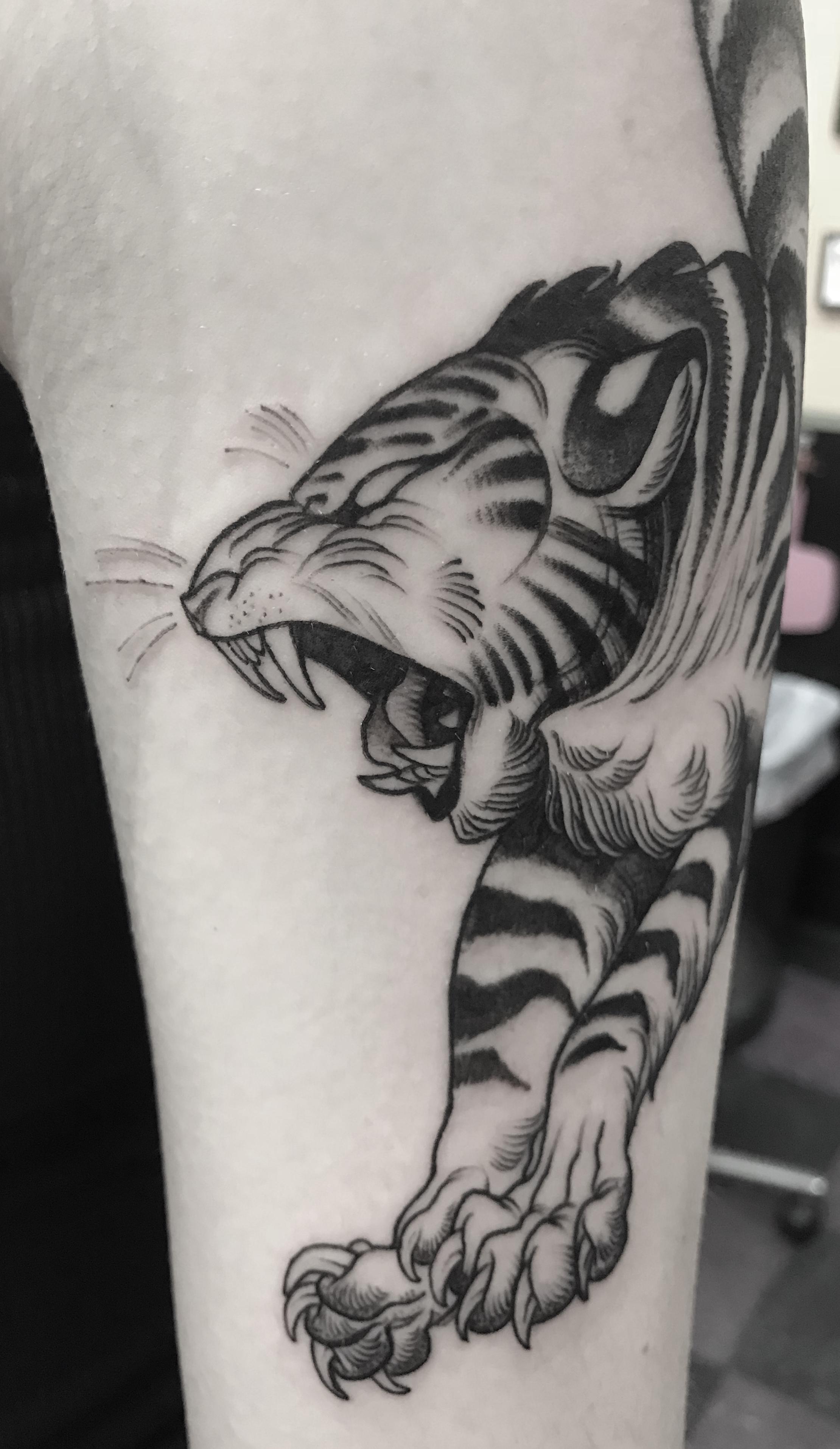 tiger_May2.jpg