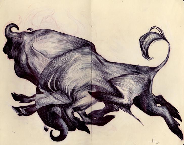 Bulls_Saveme_web.jpg