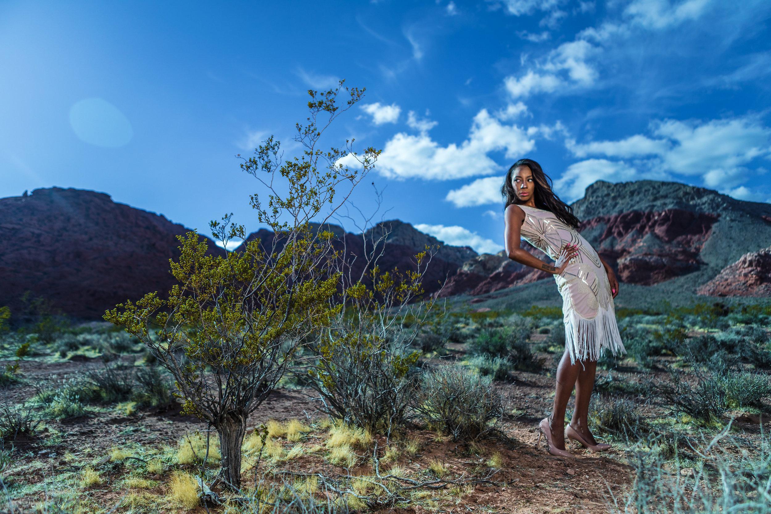 New_York_Photographer_Las_Vegas_Desert-149.jpg