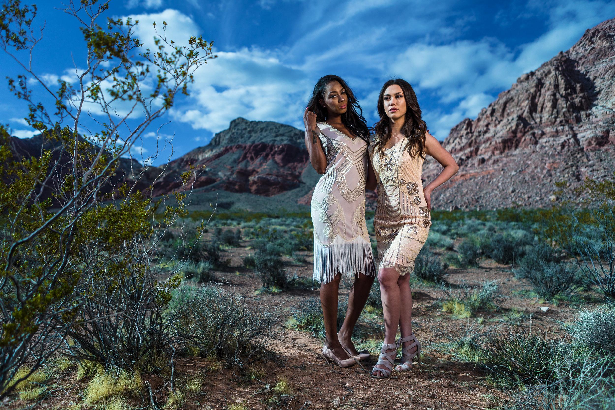 New_York_Photographer_Las_Vegas_Desert-132.jpg