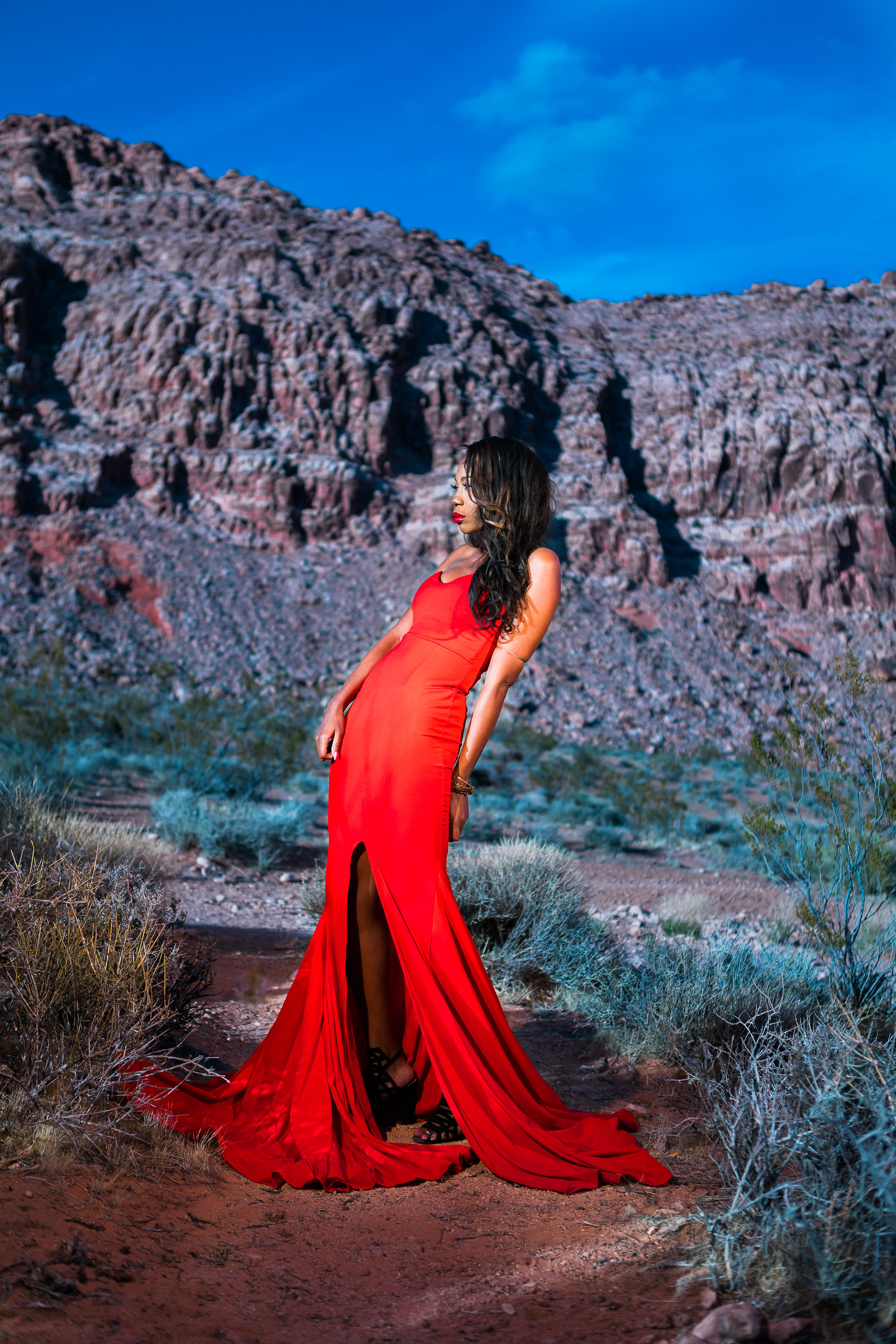 New_York_Photographer_Las_Vegas_Desert-249.jpg