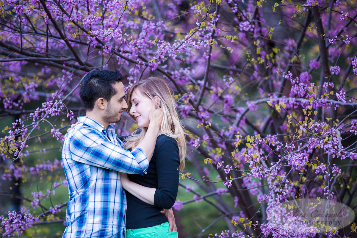 New York Engagement Photography Central Park Cherry Blossoms Spring