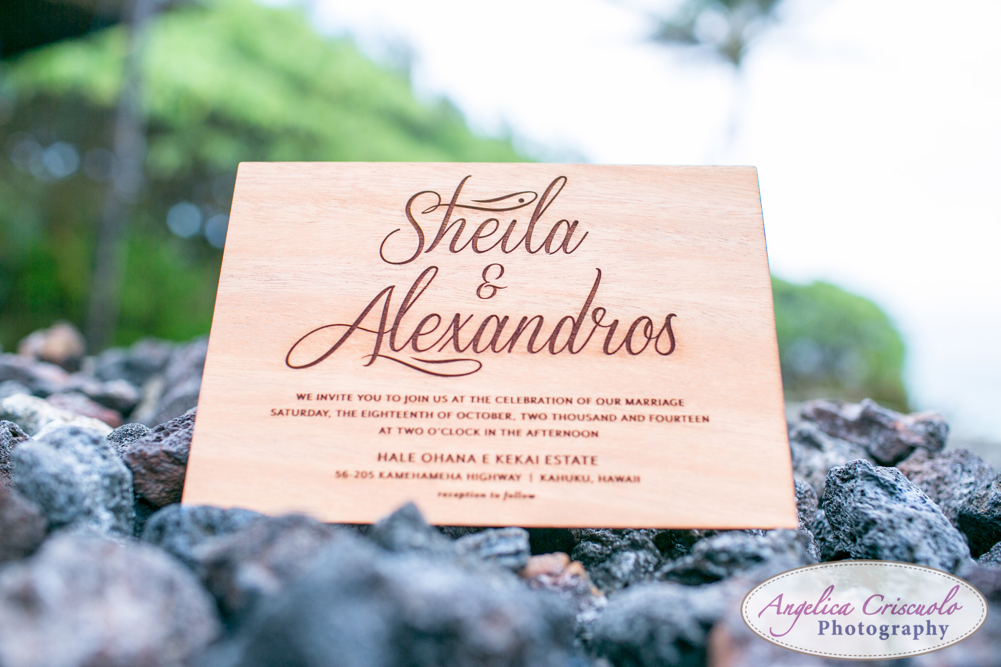 Hawaii_Wedding_Photographer_Oahu_Destination_web-213