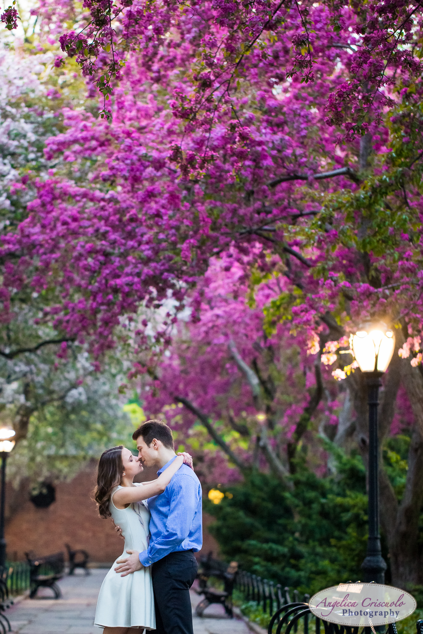 New York Wedding Engagement Conservatory Garden in Central Park Cherry Blossoms romantic