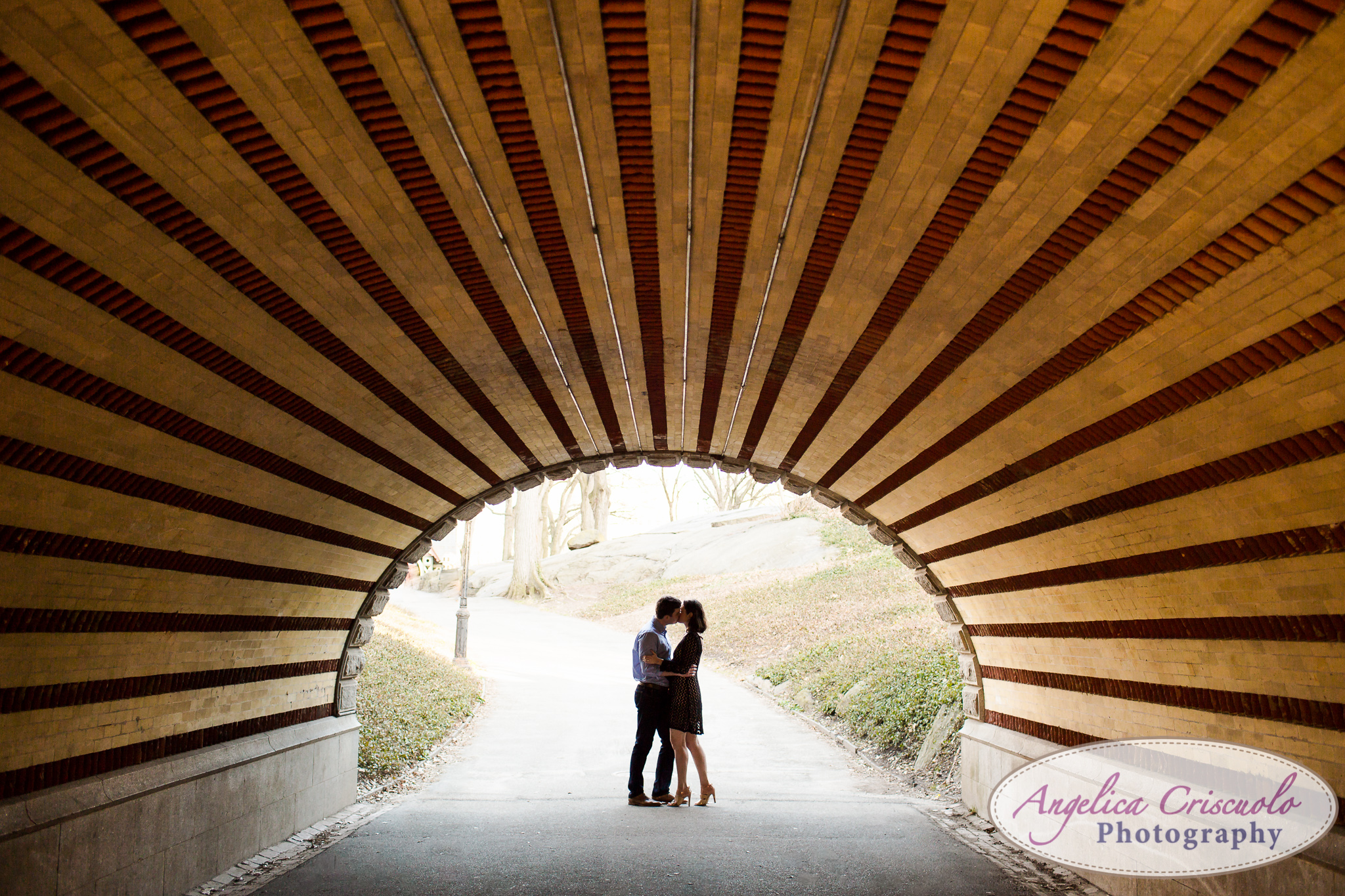 NYC Wedding Engagement photos in Central Park Ideas tunnels and silhouettes