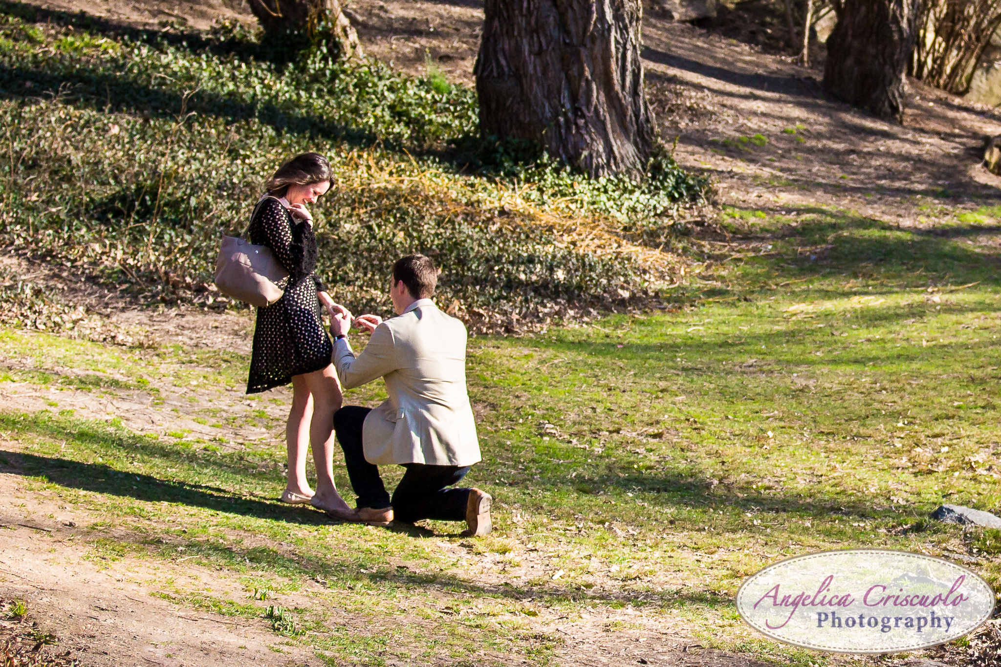 NYC Wedding Proposal in Central Park Idea down on one knee