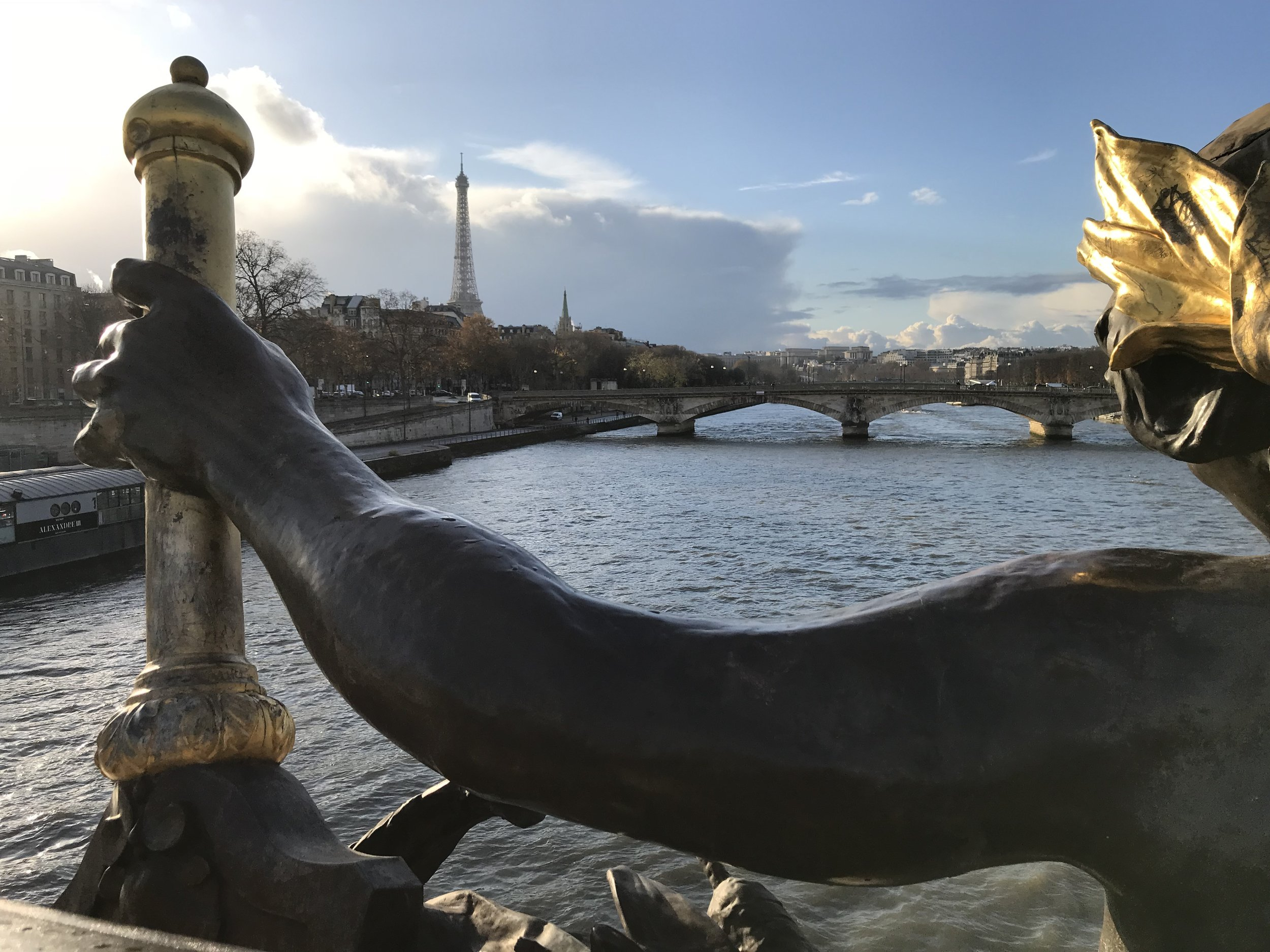 Paris_bridge_november_29_2017.jpg