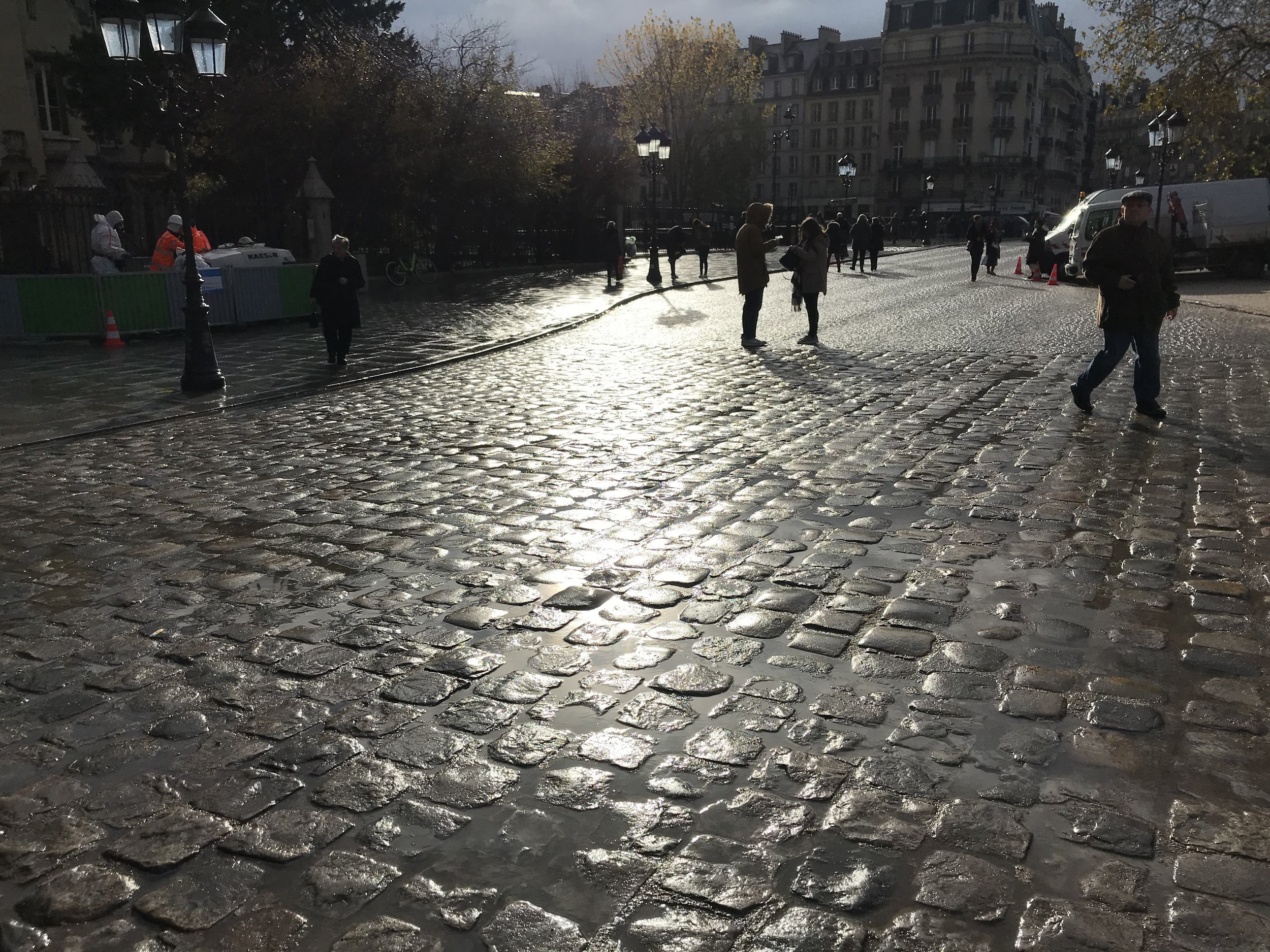 Paris_street_light_28_november.jpg