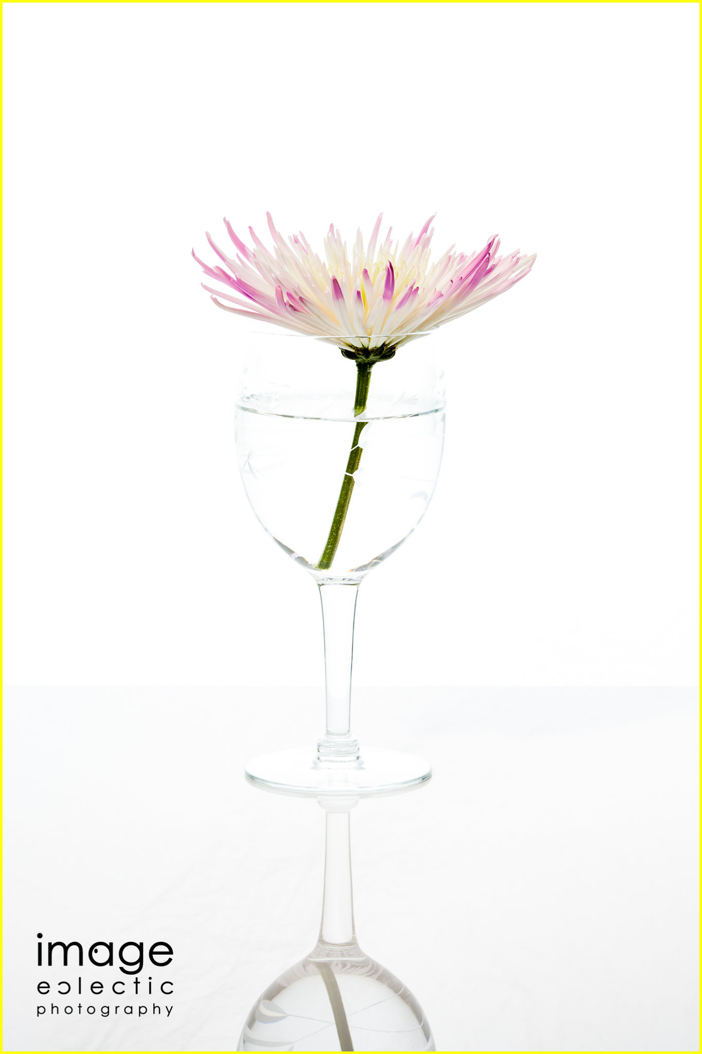Flower Glass