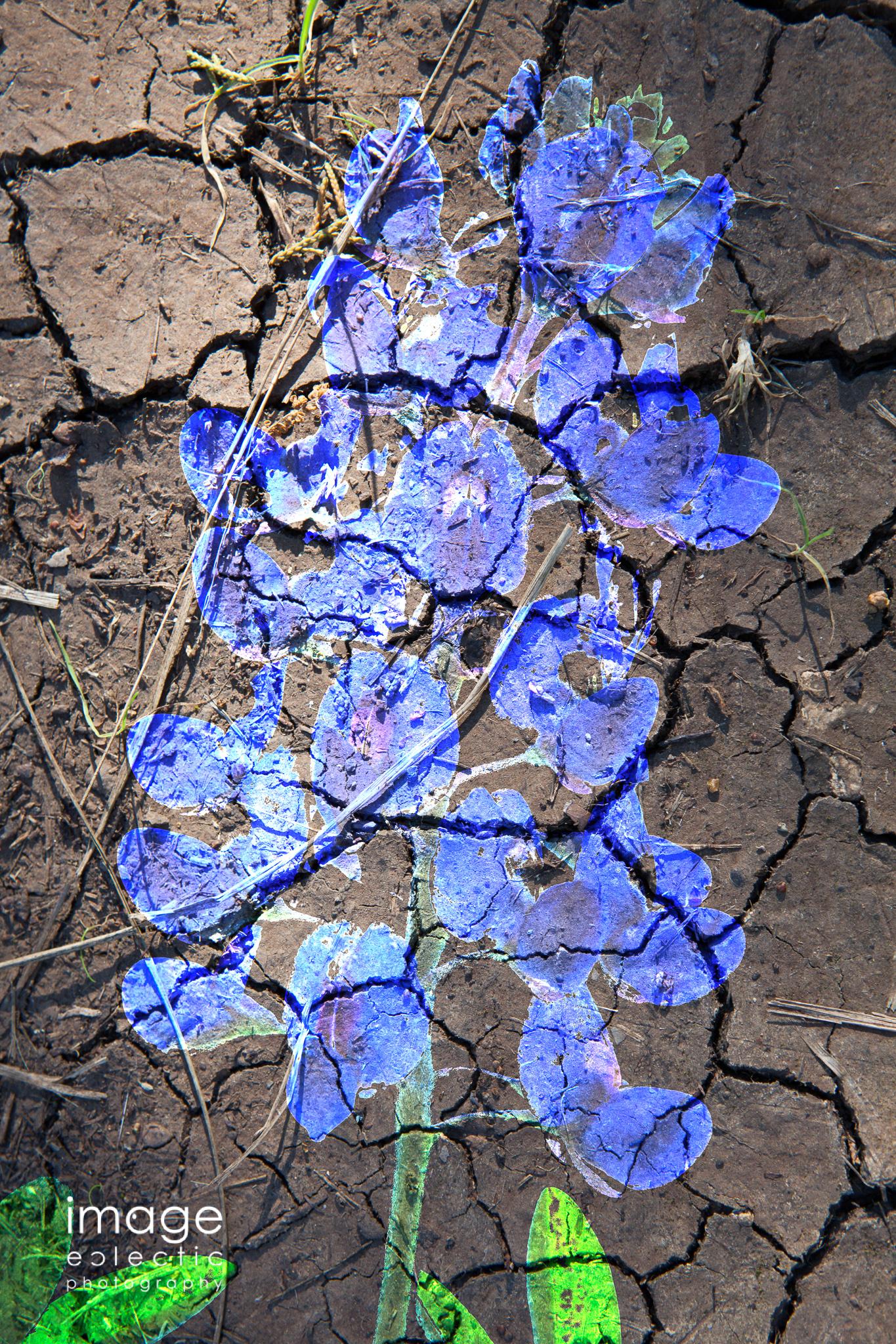 Stencil Blue
