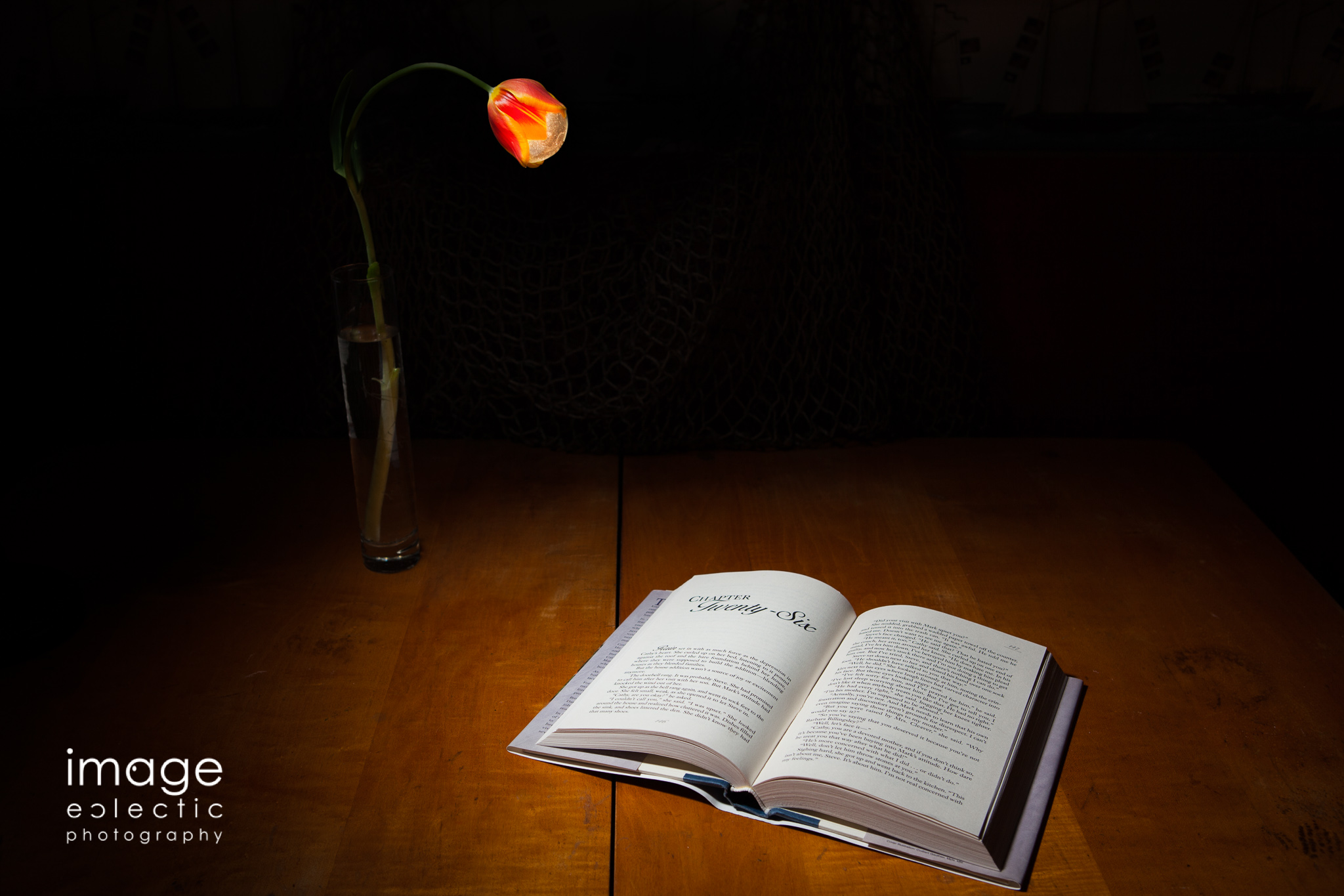 By the Light of a Tulip