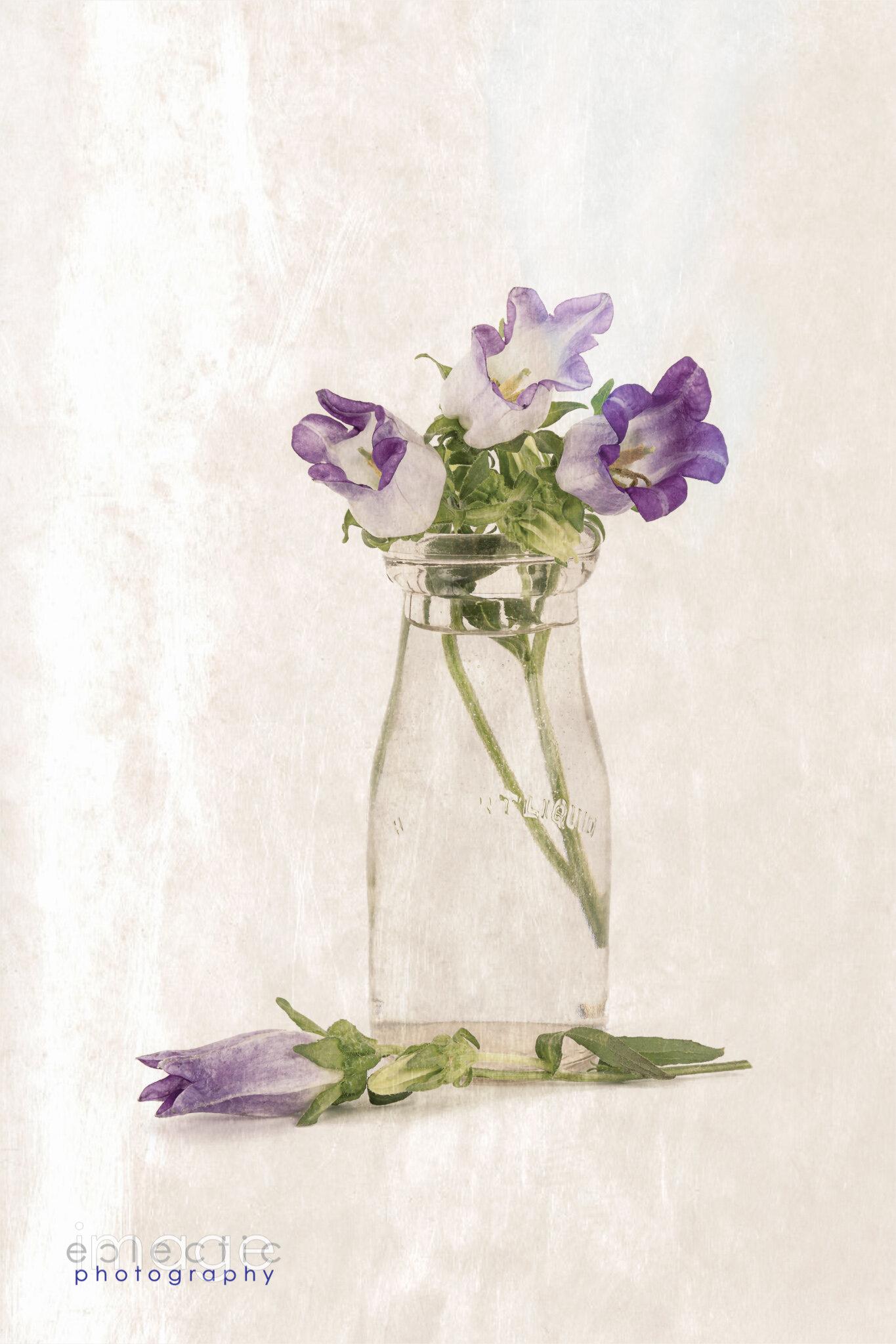 Bottle Flowers
