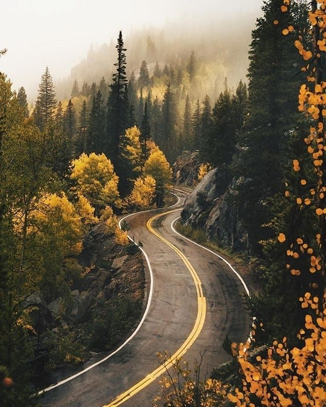 Heading into the weekend ready for fall in SoCal! 📷 via @inkifi_instagram⠀ .⠀ .⠀ .⠀ .⠀ .⠀ .⠀ #transportation #civilengineering #publicworks #vacation #roadtrip #engineering #road #fall #autumn #travel #roadtrip #nature #trees #tinyatlas #photography