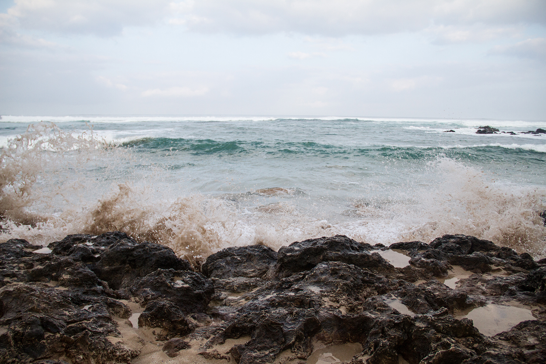 Laniakea Beach.