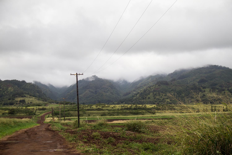 Waialua dirt roads.