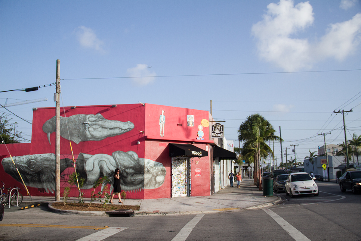 One of the many eye-catching building murals in the Wynwood ArtDistrict.