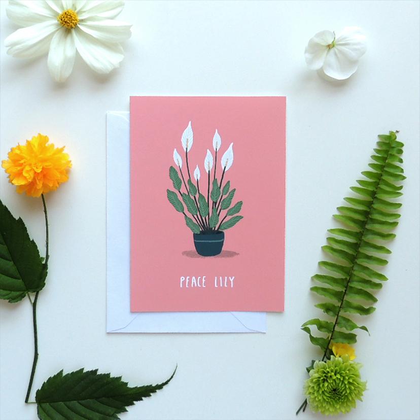 Peace lily.jpg