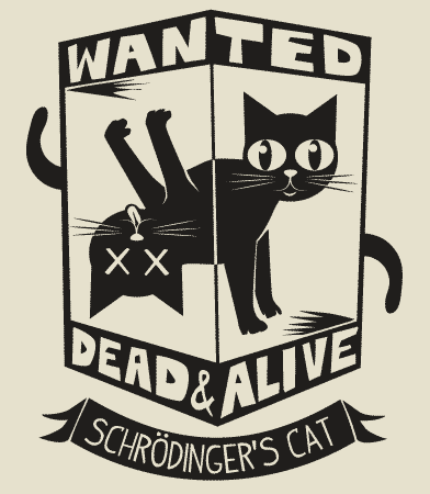 """Erwin Schrödinger: """"Until you observe the cat, it is both alive and dead at the same time."""""""