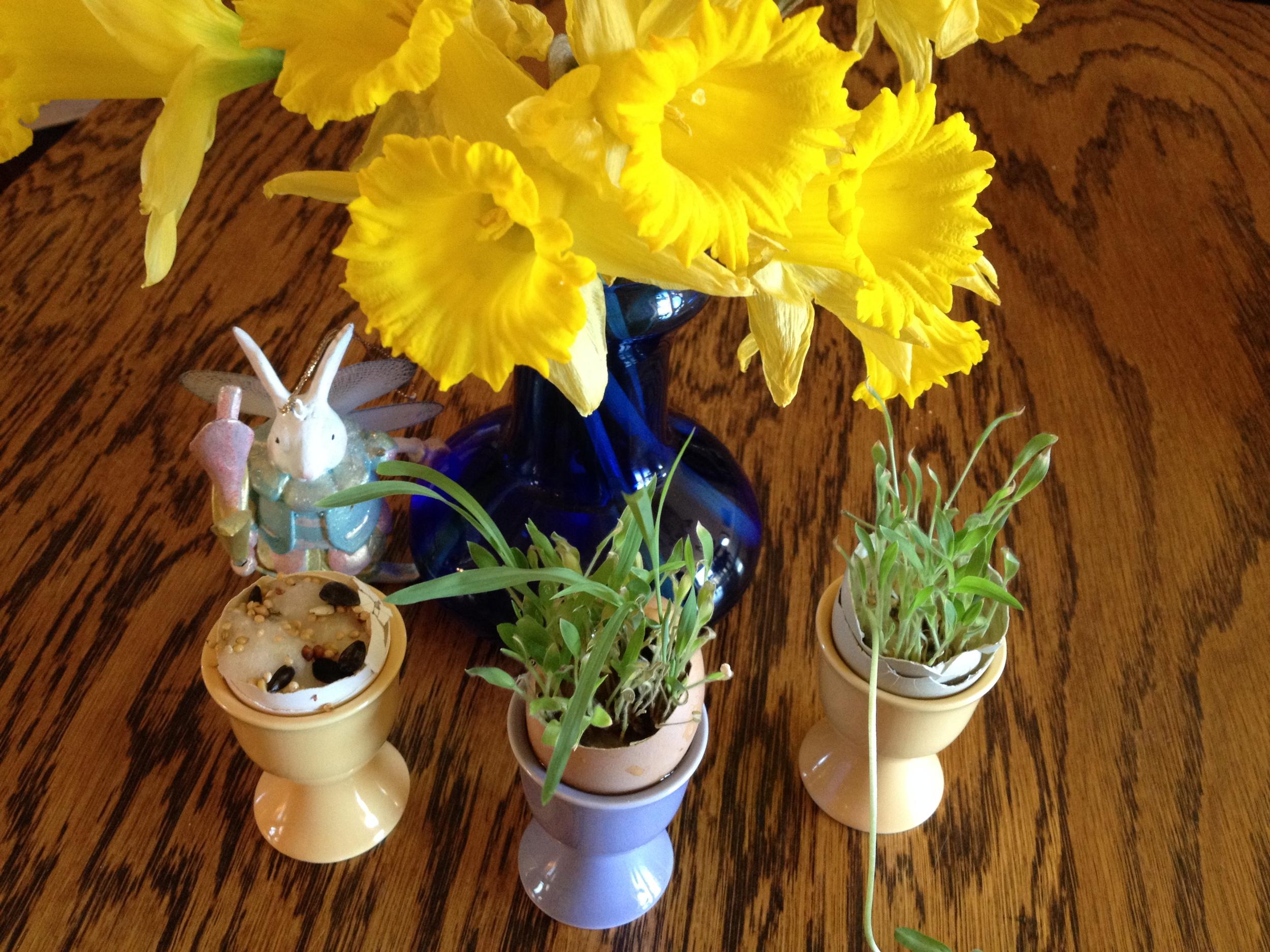 Easter Egg Garden.jpeg