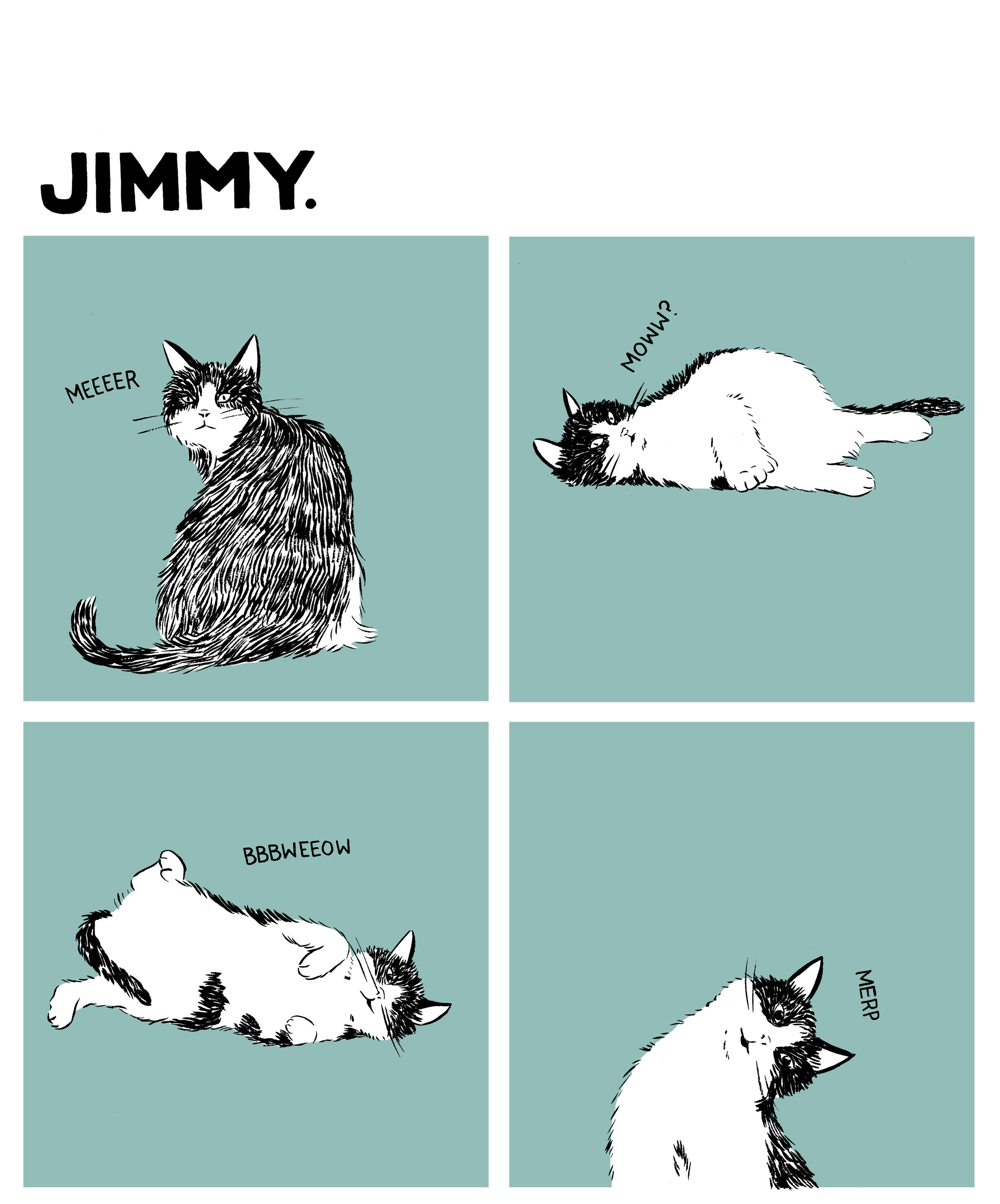 jimmy1.jpeg