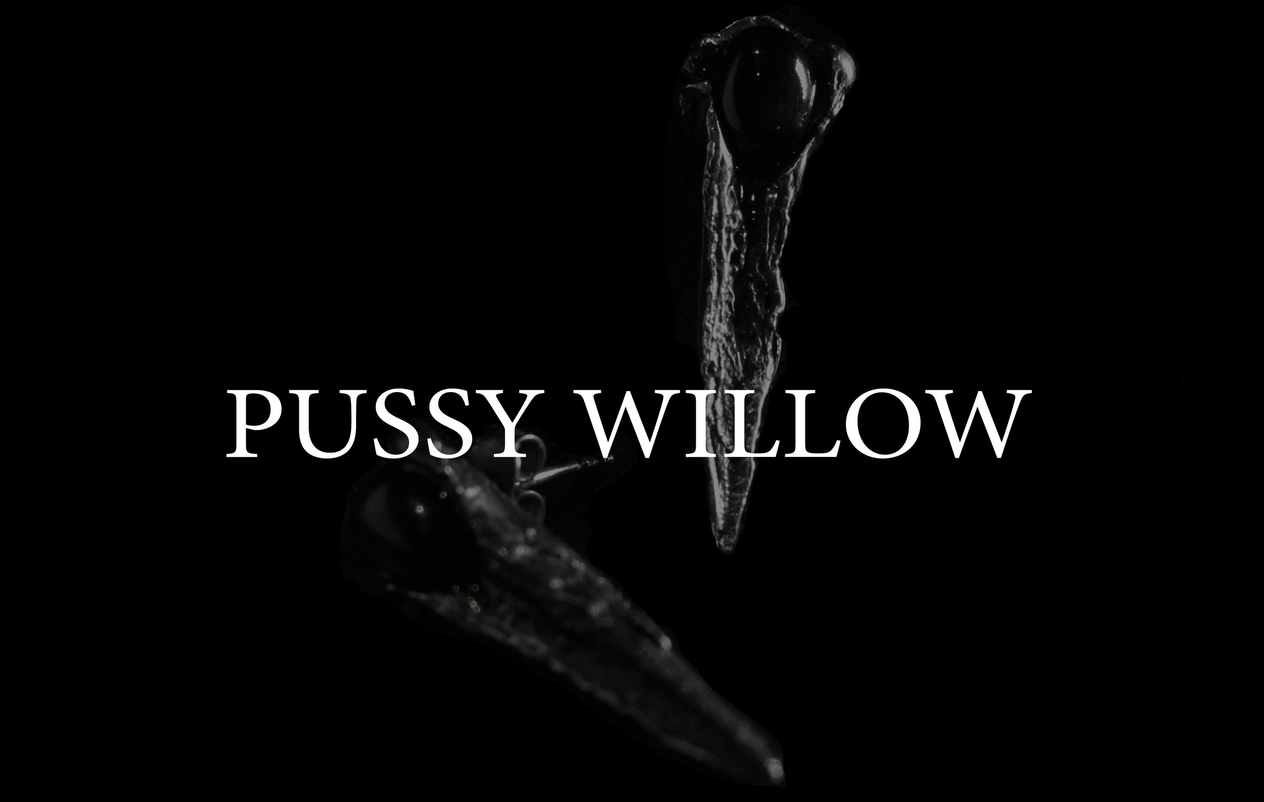 pussywillow.jpg