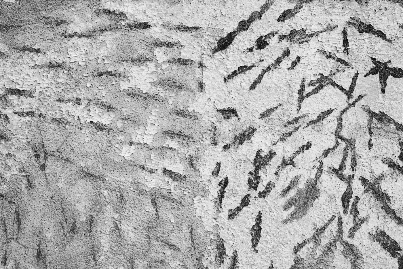"""Burwash, Sol 82    16"""" x 24"""" Archival Pigment Print, 2013"""