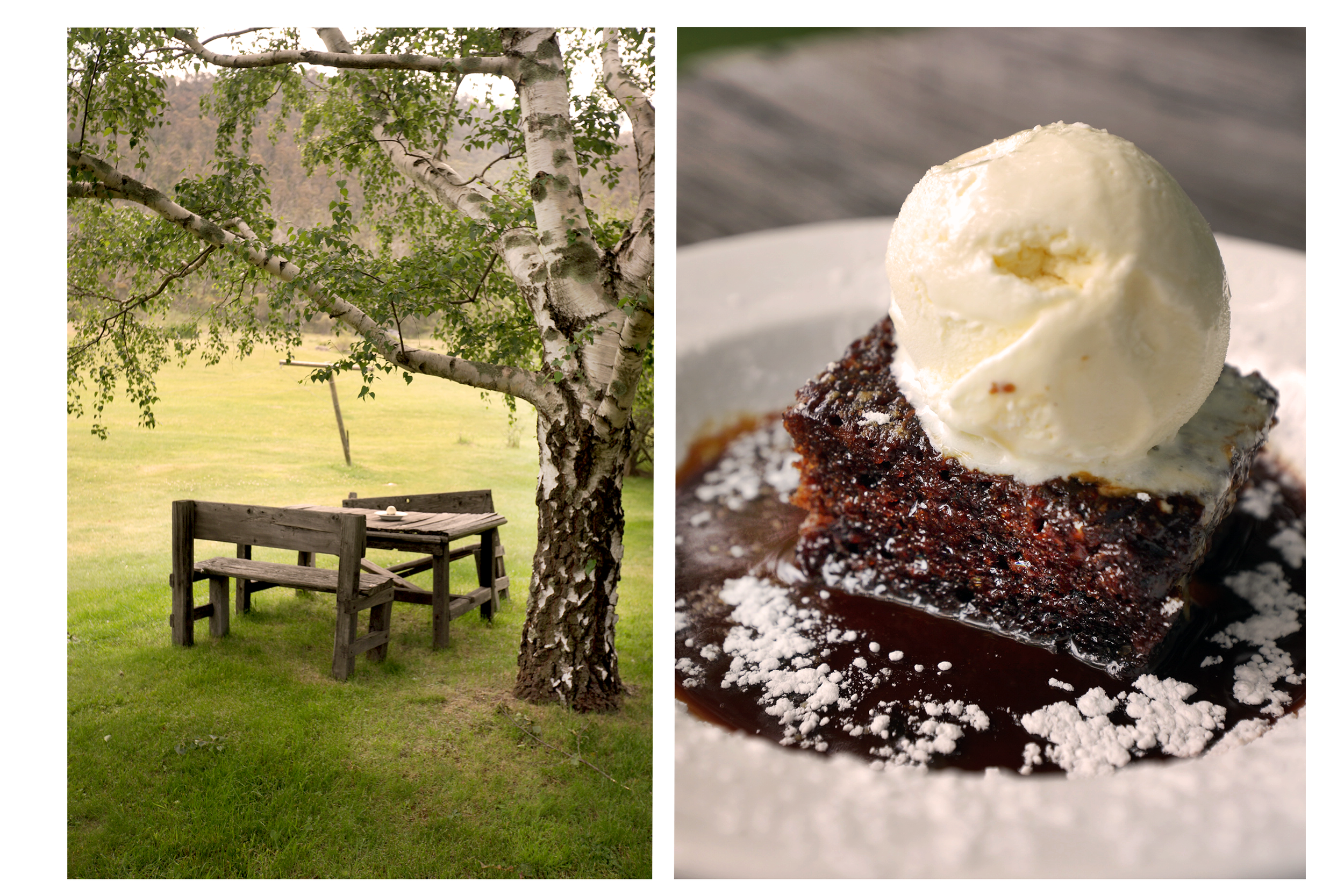 Chocolate pudding under a tree at Crackenback Farm