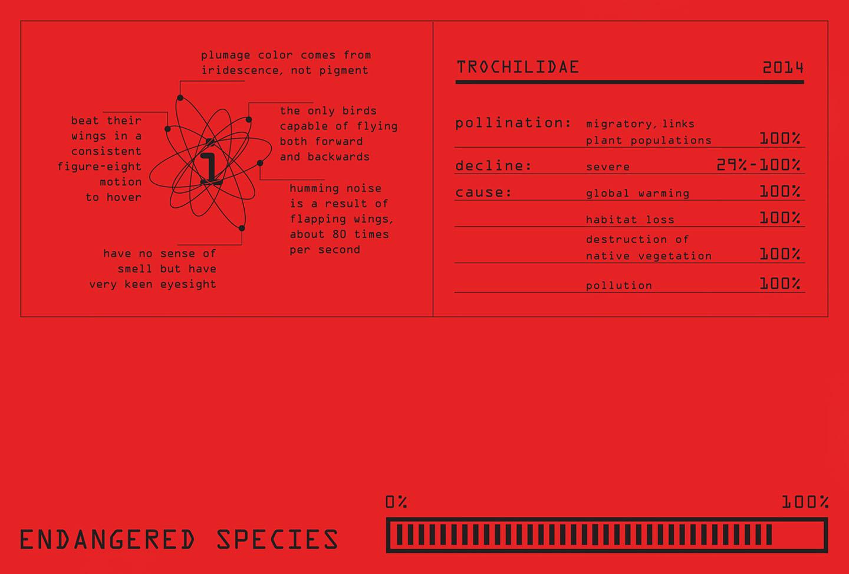 Endangered+Species_Gallery+1.jpg