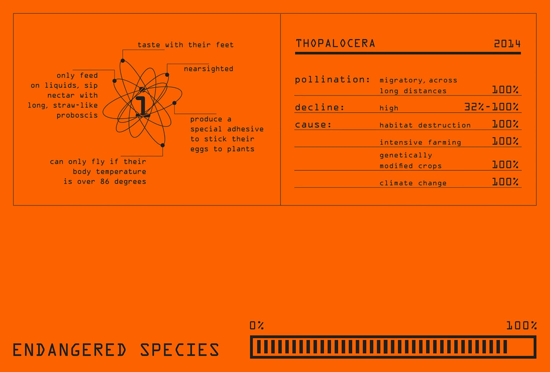 Endangered+Species_Gallery+4.jpg