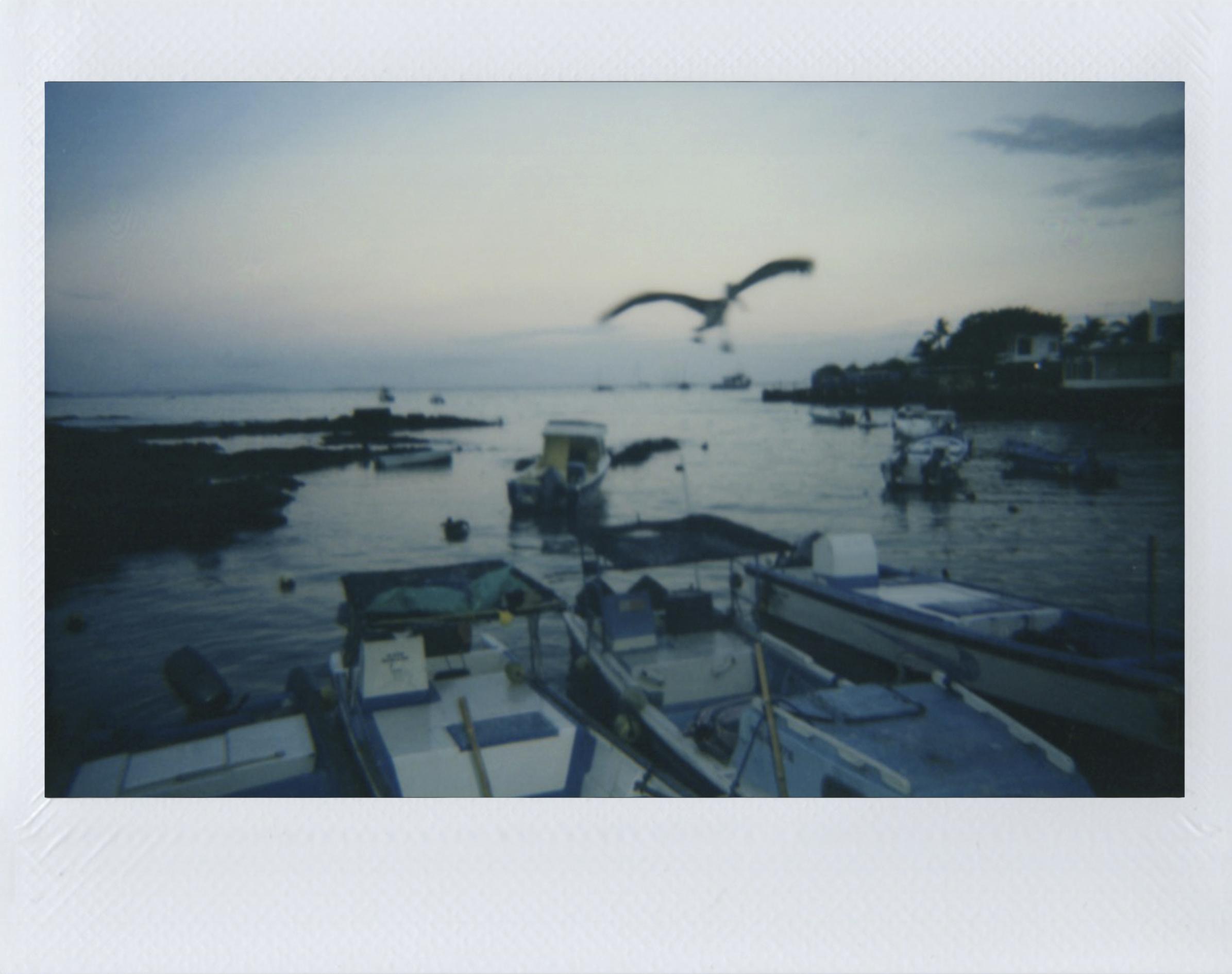 Polaroid 12.jpg