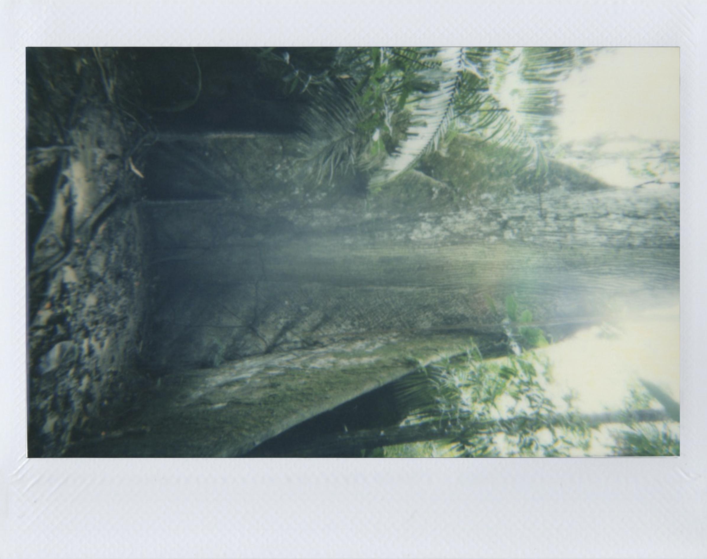 Polaroid 27.jpg