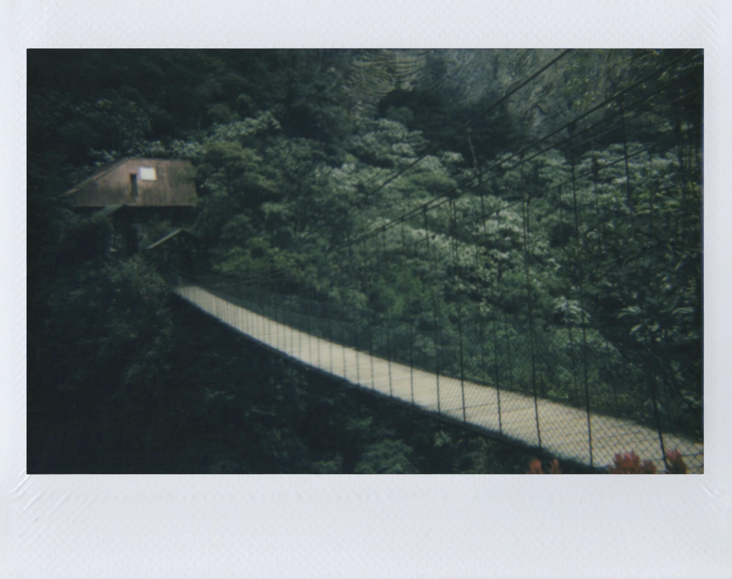 Polaroid 44.jpg