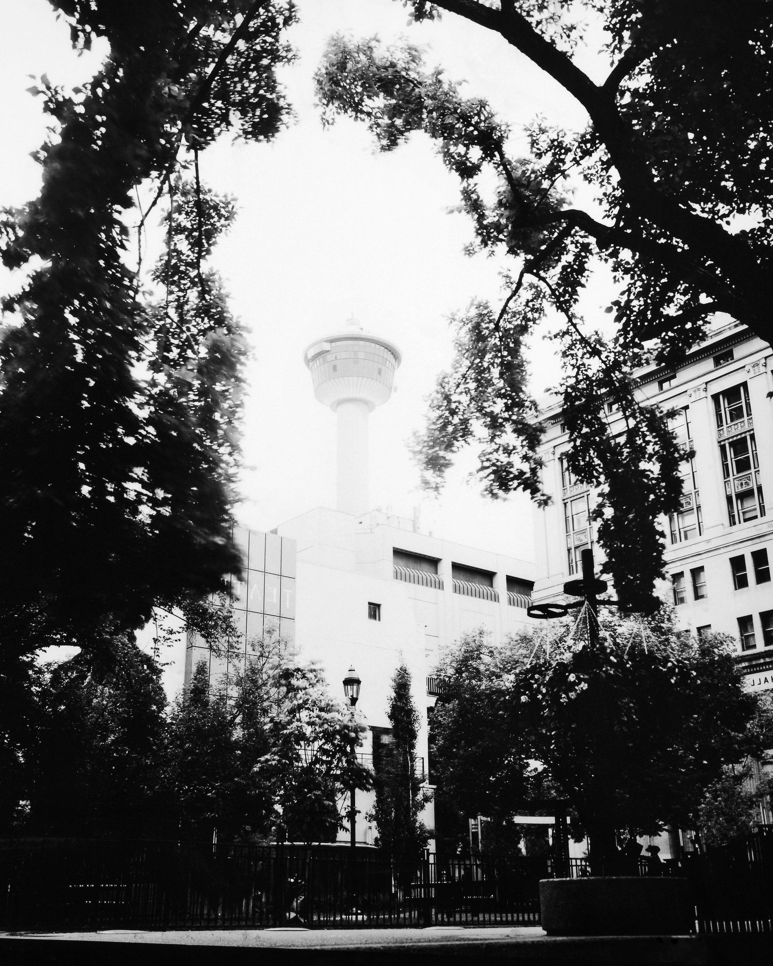 Reproduction - Calgary Tower - Print - No Border.jpg