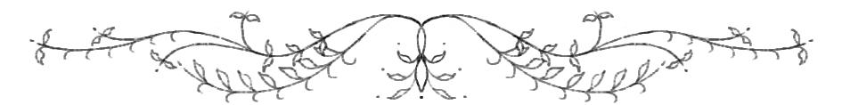 swirls (blog 250 - footer).jpg