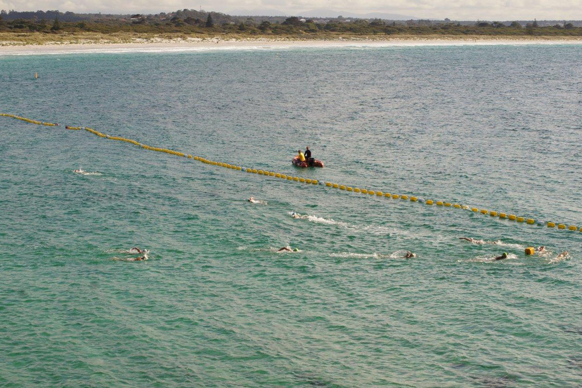 ASLSC swim event inside Ellen Cove Shark Barrier