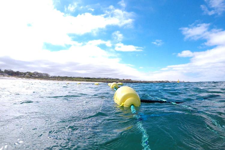 Wanneroo Shark Barrier Layout
