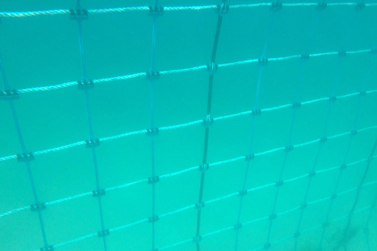 The Aquarius Barrier - the latest eco friendly shark barrier technology from Global Marine Enclosures