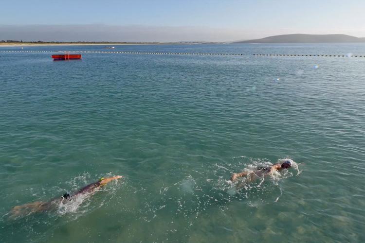 Middleton Beach Shark Barrier in Ellen Cove Albany